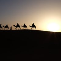 camel caravan on the horizon