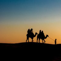 small camel caravan in front of sunset sky