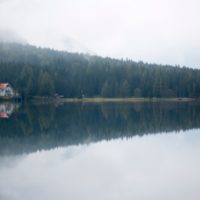 house in forest reflected on the water