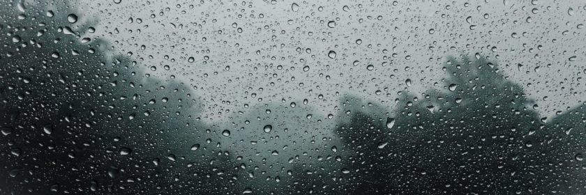 view of a forets through a rain coated window